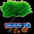 درباره کابل مازندران